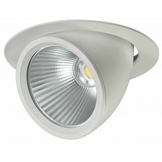Downlight COB 30W ORIENTABLE
